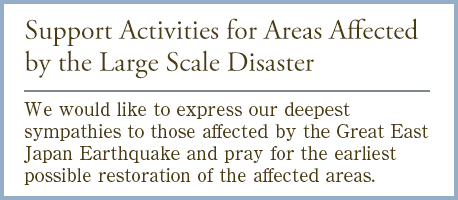 Support Activities for Areas Affected by the Large Scale Disaster